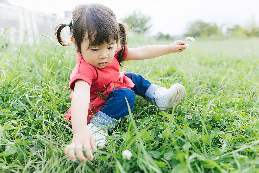 北九州の雑草処理