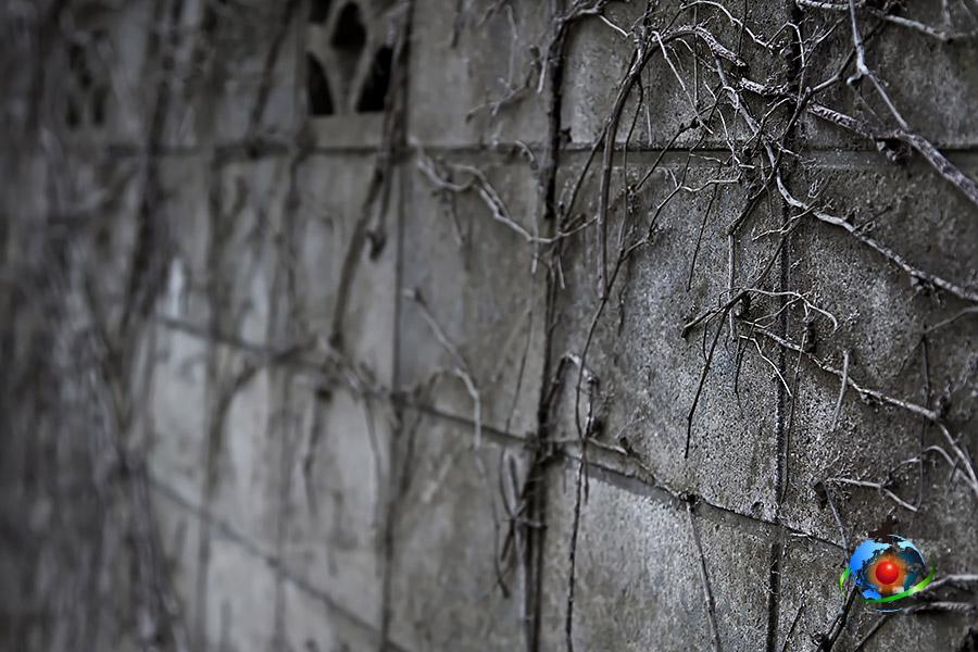 ブロック塀の片付け